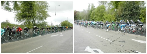 Giro Collage